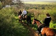 Hacienda Los Lingues invita a celebrar el Día del Trabajo  en contacto con las tradiciones del campo