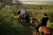 Hacienda Los Lingues invita a celebrar el Día de la Raza con actividades al aire libre