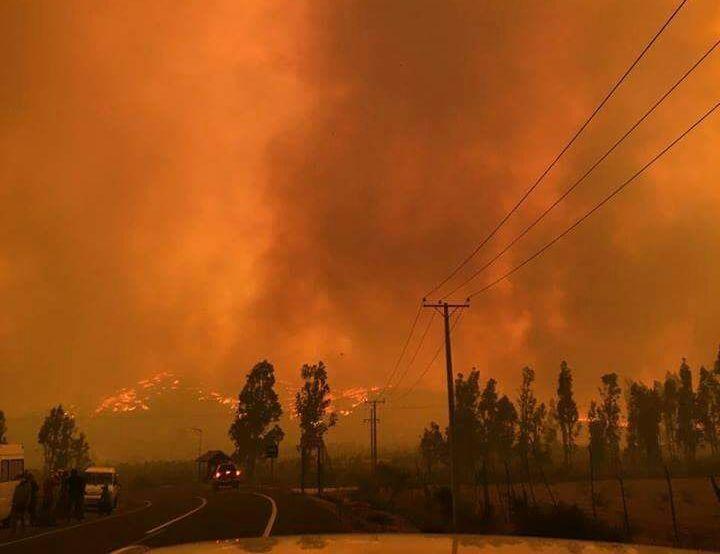Diputados UDI piden decretar zona de emergencia agrícola en la Región de O'Higgins por incendios forestales