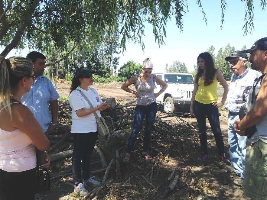 Seremi del Medio Ambiente y grupos animalistas disponen lugar para albergar animales afectados por incendios
