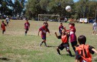 Clubes deportivos y organizaciones invitados a regularizar sus campos deportivos