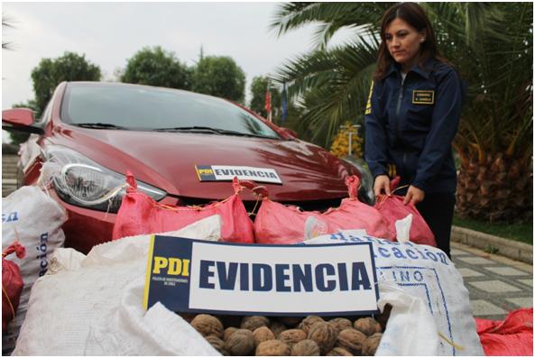 PDI Detiene a tres sujetos con 238 kilos de nueces en auto modificado