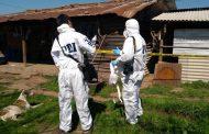 PDI investiga el homicidio de una mujer en San Fernando