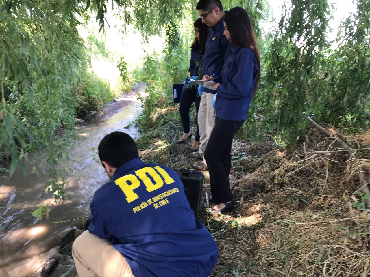 Hallan cadáver en canal de regadío en Rancagua: Data de muerte sería de 3 meses