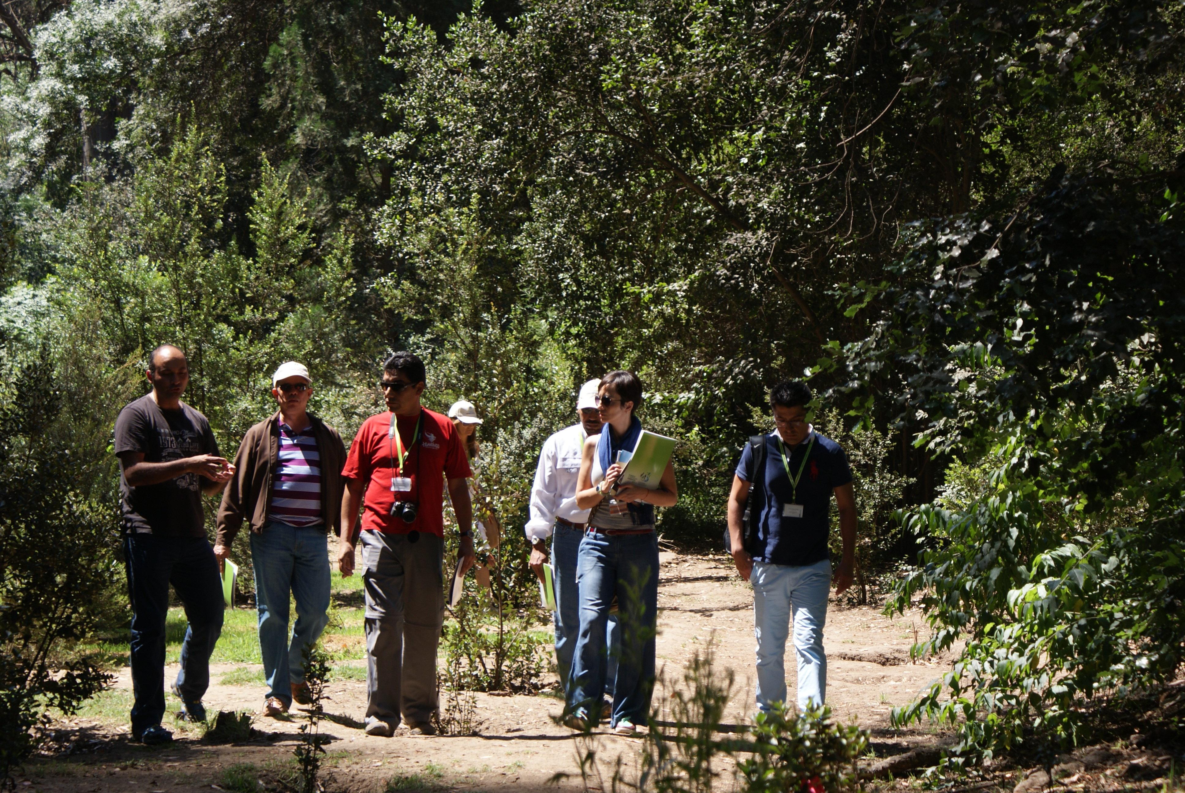 Ministerio del Medio Ambiente invita a la comunidad a postular al Fondo de Protección Ambiental Áreas Verdes 2019