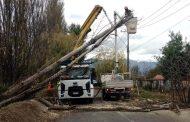 CGE trabaja en reponer suministro eléctrico a más de 7 mil hogares de la región