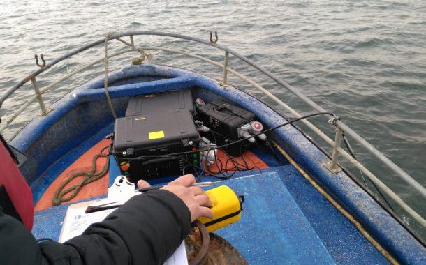 Probarán dispositivo sonoro para alejar a Lobos Marinos de faenas pesqueras en Pichilemu