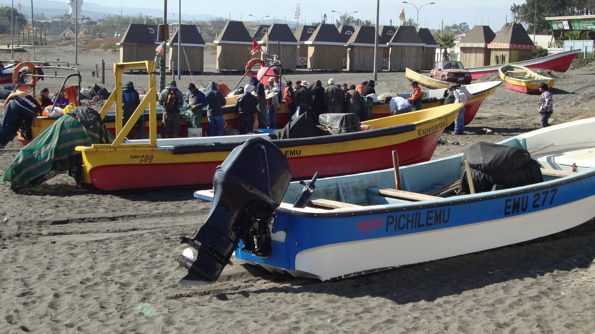 Nueva Ley: Pescadores de O'Higgins podrán disponer de sus Caletas hasta por 30 años