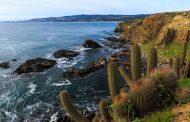 Enero deja positivo balance de turistas en destinos de Pichilemu y Valle de Colchagua