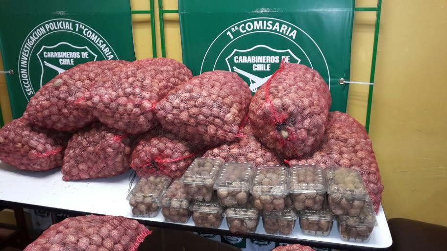 Carabineros recupera más de 300 kilos de nueces robados