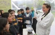 San Fernando y Tinguiririca Energía inauguran  nueva versión de la Feria de Ecología y Sustentabilidad