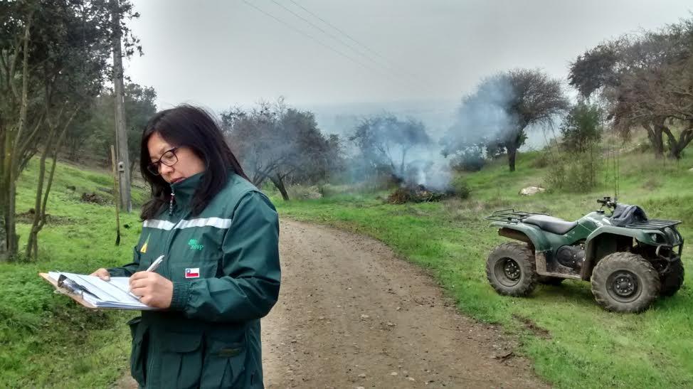CONAF paraliza 52 quemas ilegales en la Provincia de Cachapoal