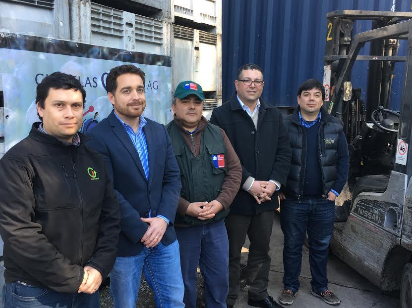 Productores de O'Higgins  Apoyados por Corfo exportaron a China  primer container  a nivel nacional de ciruelas deshidratdas bajo nuevo protocolo