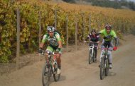 Récord de participantes competirán en el Mountaibike La Vacada Carlo de Gavardo
