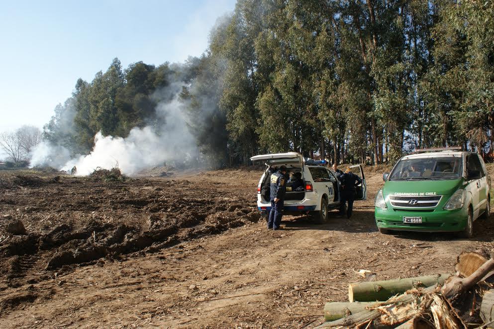 Detienen a trabajador que realizaba quema ilegal en Machalí