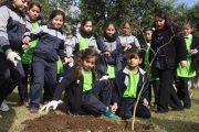 Con la plantación de árboles se celebró el Día Mundial del Medio Ambiente en Rancagua