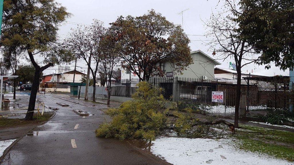 Más de 12 mil clientes sin suministro eléctrico en la región de O'Higgins tras intensa caída de nieve