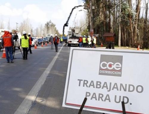 Agrupación Bosques para Cachapoal interpone Recurso de Protección contra CGE por tala de árboles