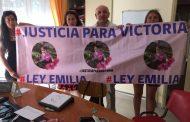 Diputado Castro anuncia modificaciones para endurecer Ley Emilia