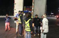 Casi 2 toneladas de merluza ilegal incautó Sernapesca en la región de O'Higgins en el marco de Semana Santa