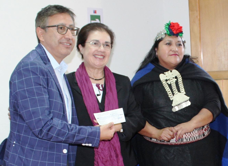 Ministerio de las Culturas, las Artes y el Patrimonio entrega fondos para artistas y gestores culturales de O'Higgins