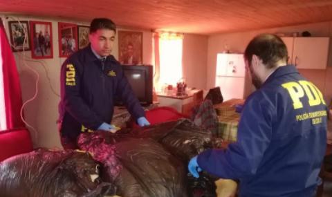 PDI incauta más de 400 kilos de carne faenada en Chimbarongo