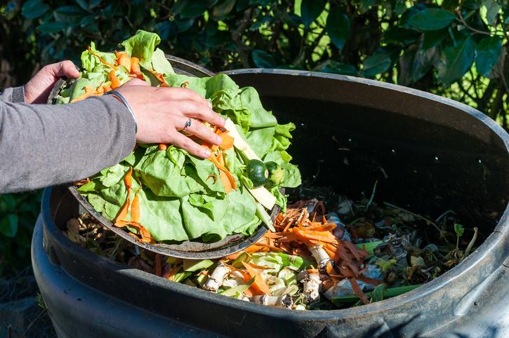 Tecnologías para el reemplazo de bolsas plásticas de un solo uso y Composteras municipales