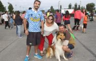Registro Nacional: Más de 70 mil mascotas fueron inscritas en toda la región