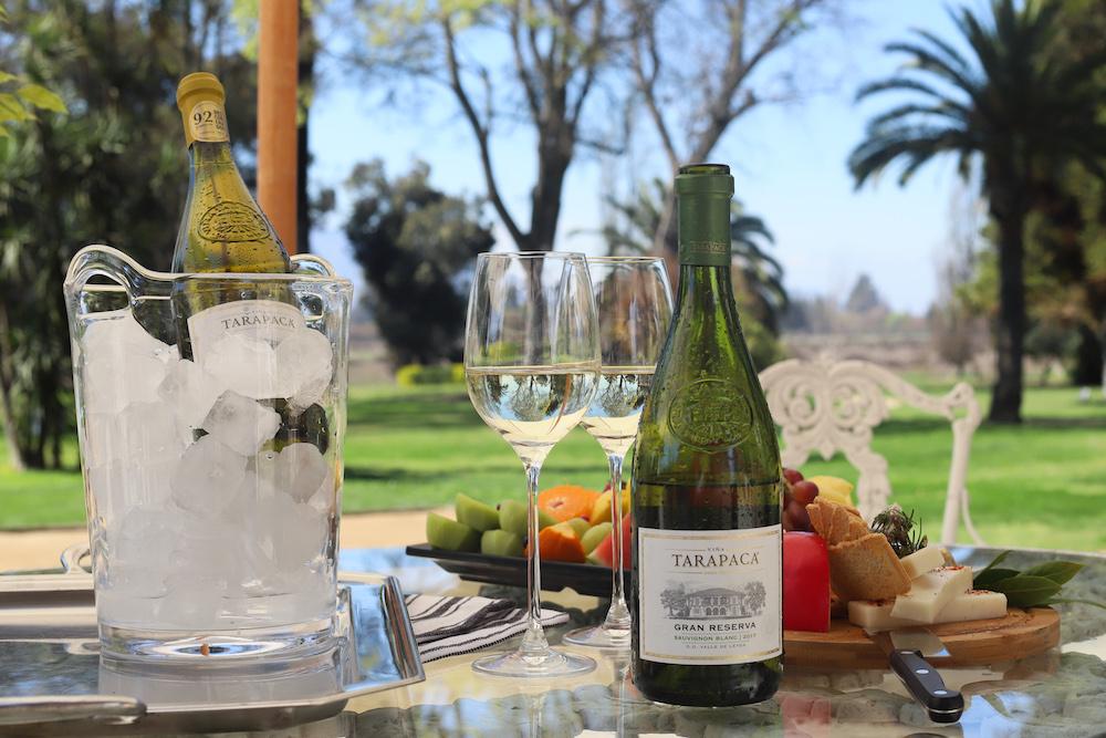 Tres vinos de Viña Tarapacá para disfrutar la llegada de la primavera