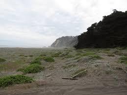 Nuevo hito de apertura de playa: se concreta acceso de Playa Tanumé en O´Higgins