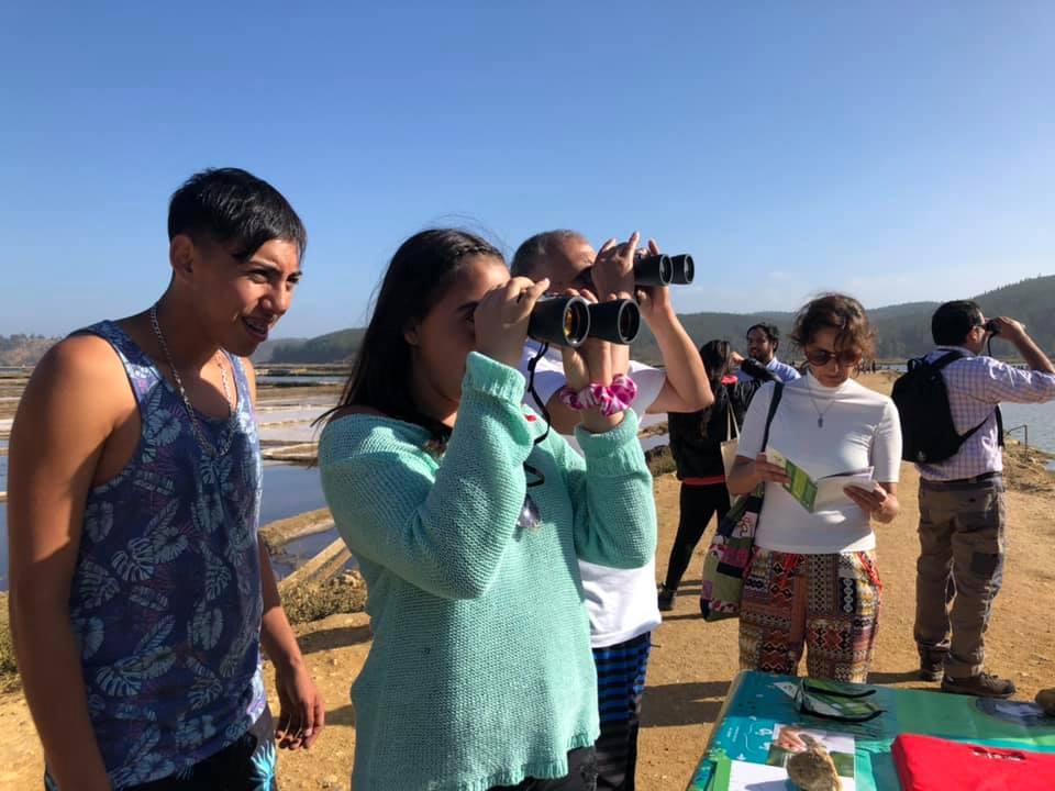 Exitosa jornada de avistamiento de aves en Cáhuil congregó un centenar de personas.