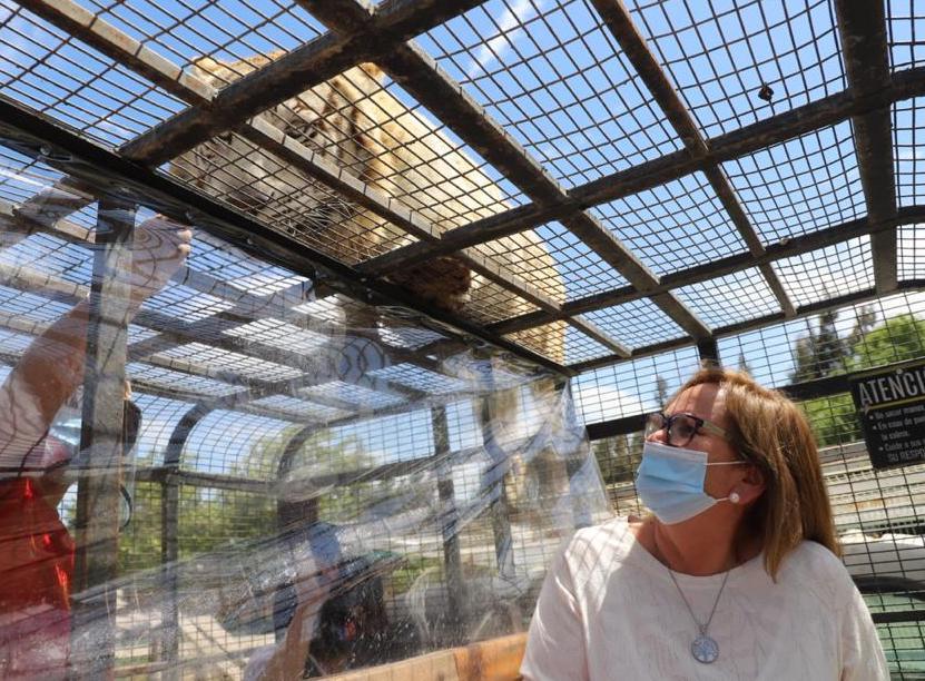 Autoridades visitan el Parque Safari el día de su reapertura