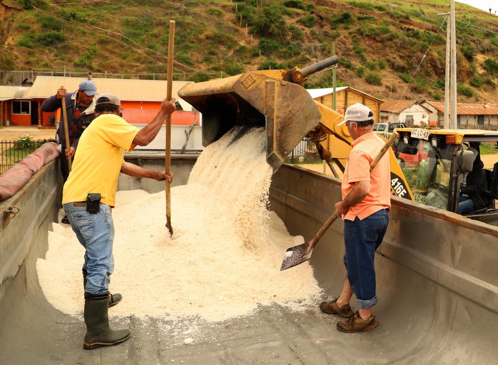 División El Teniente apoya a los salineros de Lo Valdivia con compra de sal de mar