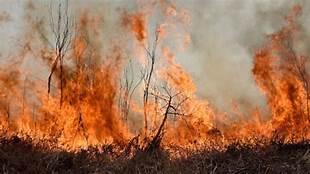 Monitoreo Alerta Roja para la comuna de San Fernando por incendio forestal